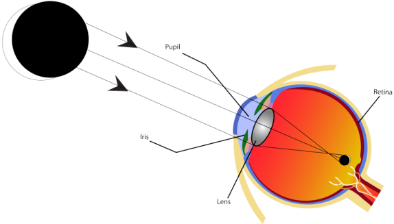 BSC eye safety diagram